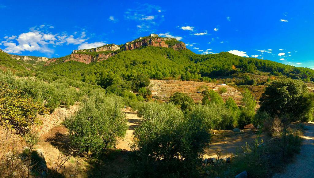Vistas del Camí de Les Tosques, el camino de Vilaplana a La Mussara