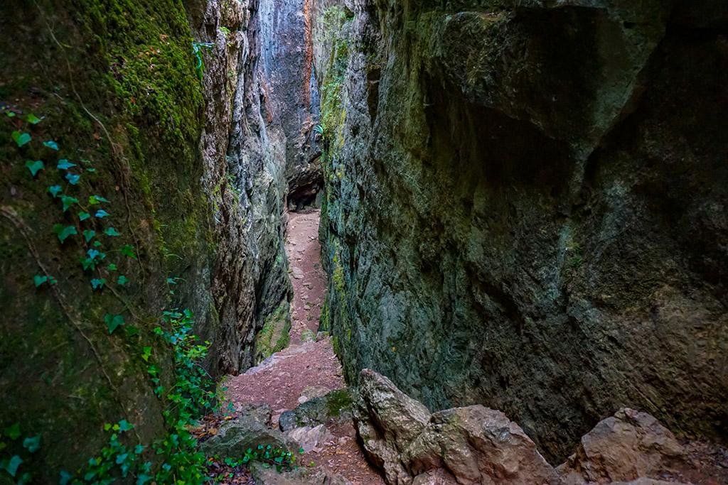 Els Avencs de La Febró, una de las mejores rutas de senderismo en Tarragona.