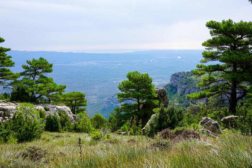 Vistas de la planicie de Tortosa y el Delta del Ebre