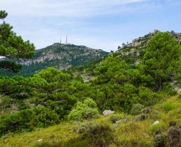 Mont Caro